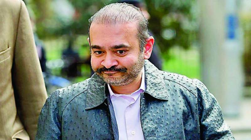 Fugitive diamantaire Nirav Modi, who is fighting extradition to India on charges of over nearly USD 2 billion Punjab National Bank (PNB) fraud and money laundering case, will appear via videolink from his London jail for a regular remand hearing at Westminster Magistrates' Court on Thursday. (Photo: File)