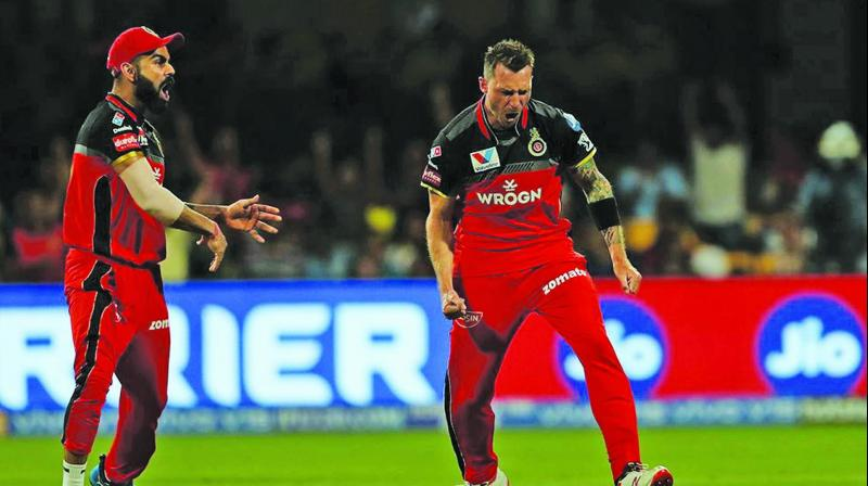 RCB's Dale Steyn (right) and Virat Kohli celebrate a CSK wicket. (Photo: BCCI)