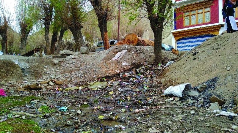 Garbage litters a previously pristine environment around Leh in Jammu and Kashmir.