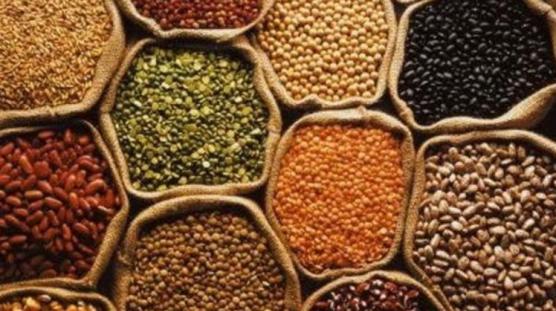 As per the data, pulses production is likely to increase to 9.45 million tonne in the 2021-22 kharif season. (Photo: PTI/File)