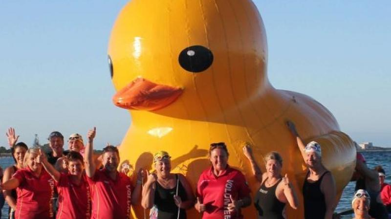 The duck, owned by Cockburn Masters Swimming Club, was last seen at Perth's Coogee Beach. (Photo: AFP)