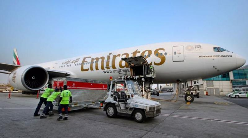 Emirates flight 203, a double-deck Airbus A388 carrying about 500 passengers, landed shortly after 9 am EDT (1300 GMT), according to an airlines spokeswoman. (Representational Image)