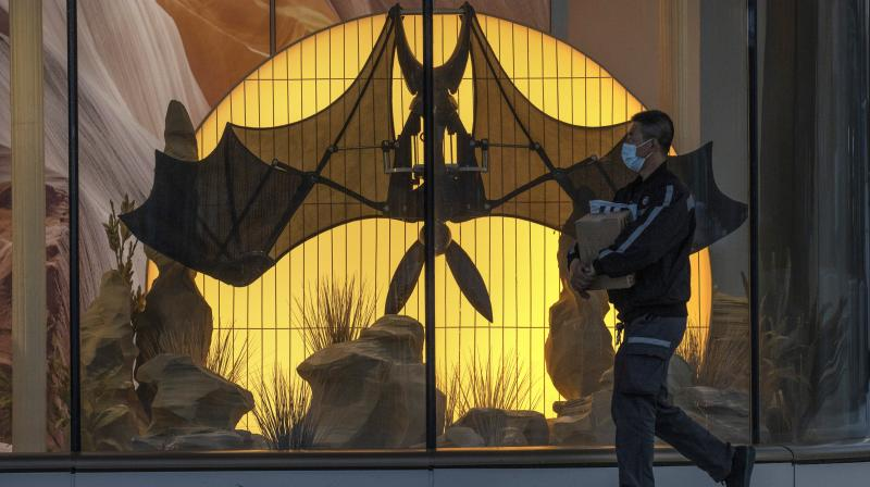 A man wearing a mask walks past a mechanical bat displayed at a mall in Beijing on March 15, 2020. Scientists have not yet determined exactly how the new coronavirus first infected people. Early evidence suggesting it originated in bats or other wild animals have resulted in calls for stricter regulation of the wildlife trade in China. (AP)