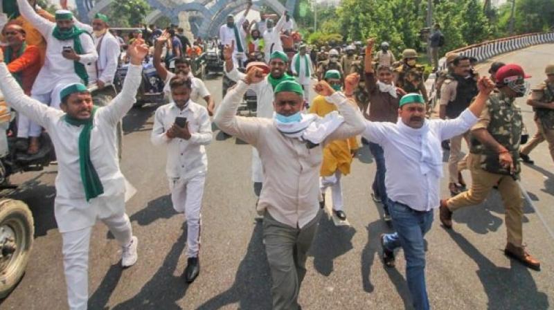 Farmers stage a protest at Delhi-Noida border over farm bills. (PTI)