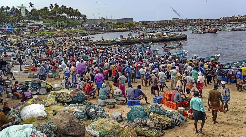 Crowded Vizhinjam fishing harbour after ease in COVID-induced lockdown restrictions in Thiruvananthapuram. (Photo: PTI)