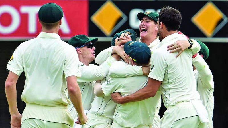 Australia celebrate their first Test win against Pakistan at the Gabba. (Photo: AFP)