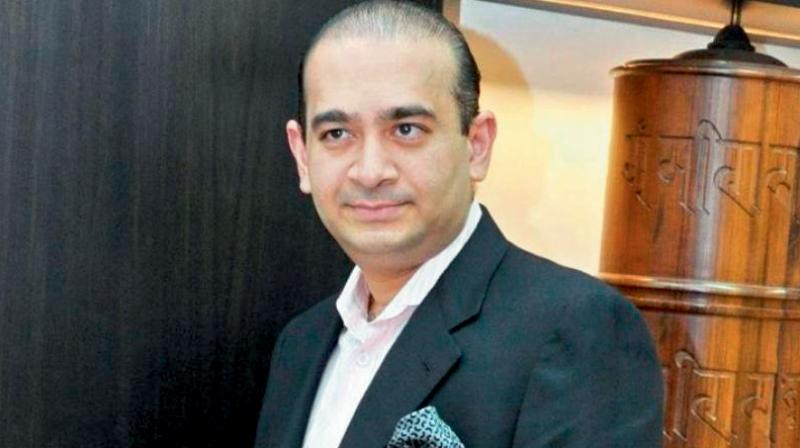 Nirav Modi loses extradition fight, UK judge rules he has ...