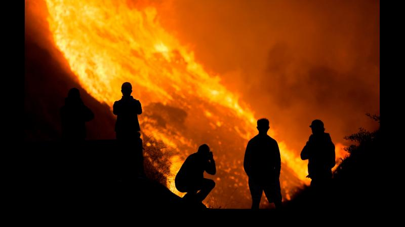 The future looks even more turbulent — more heatwaves worsened by higher humidity, erratic rainfall, more droughts, floods and forest fires. Representational Image. (Twitter)