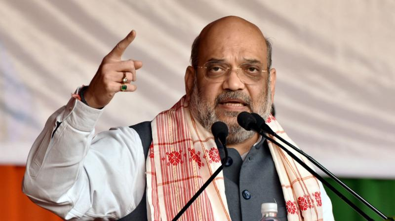 Mr Shah also reiterated the commitment that the BJP will make Assam flood-free if it retains power. (Photo: PTI)