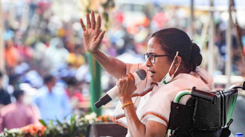 Banerjee also slammed the home minister for the deaths of CRPF jawans in an encounter with Naxals. —  PTI file photo