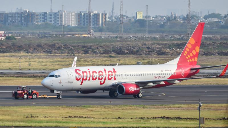 SpiceJet had approached the DGCA for permission since the rest for the pilots was not in a suitable environment as mandated by India's Civil Aviation Regulations (CAR). (Representational Photo: PTI)