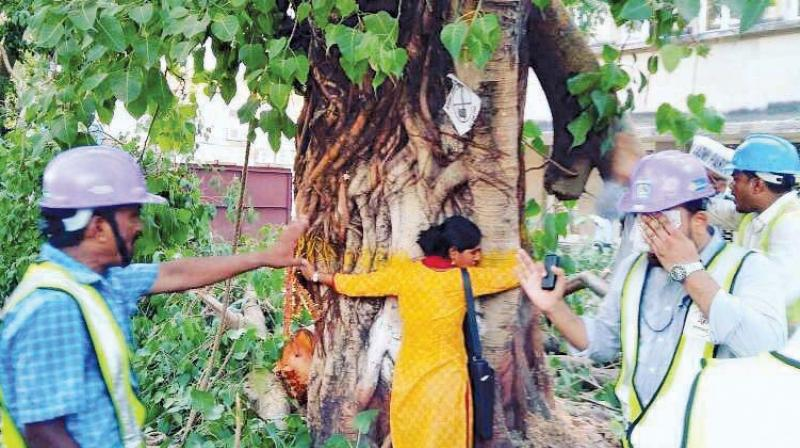 """A group of activists had started a """"Chipko movement"""" wherever the authority began felling trees."""