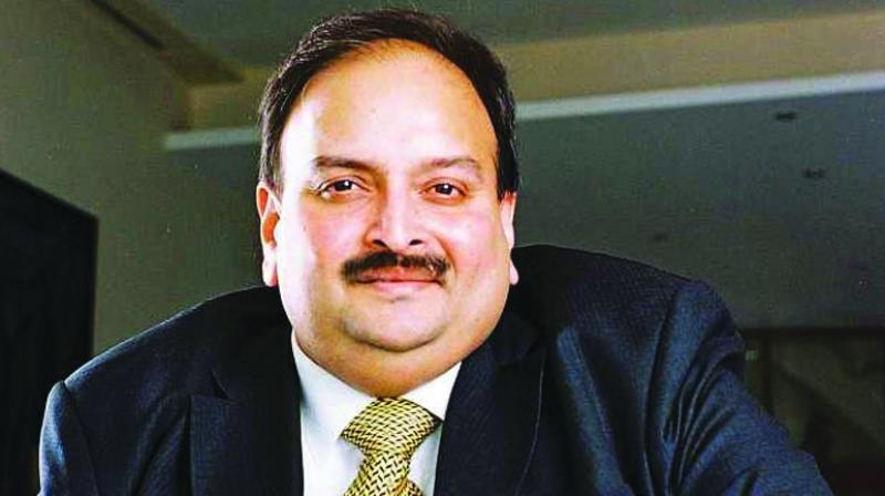 Choksi in the video said, 'All the allegations labelled by the EDI are false and baseless. They have attached my properties illegally without being any basis of the seen.' (Photo: File)