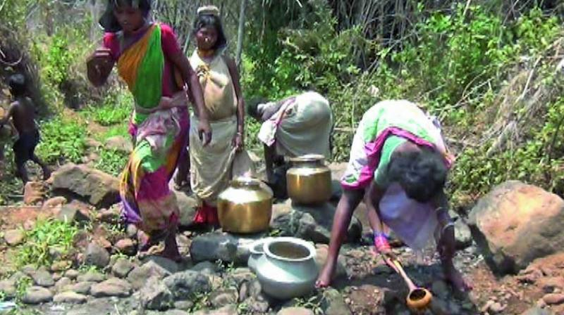 Tribal women collecting water