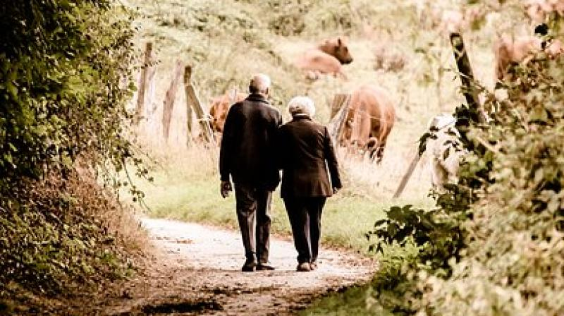 The link between leaving the house and longevity, however, remained after the researchers accounted for medical or mobility issues. (Photo: Pixabay)