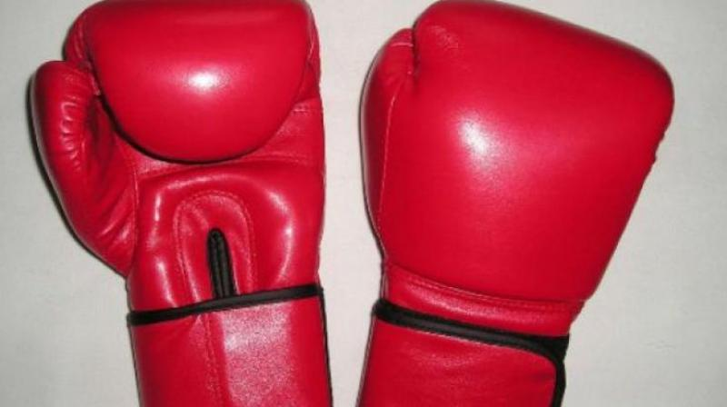 Former world and Asian champion L. Sarita Devi (60kg), of All India Police, also won, beating RSPB's Pavitra in her final. (Representational image)