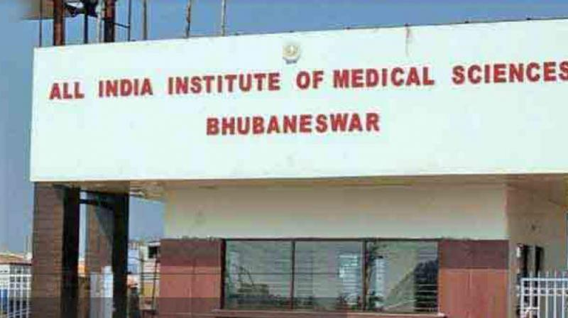 According to Commissioner of Police YB Khurania, the youth's last known location was somewhere in Howrah in West Bengal. (Photo: AIIMS Bhubaneswar official website)