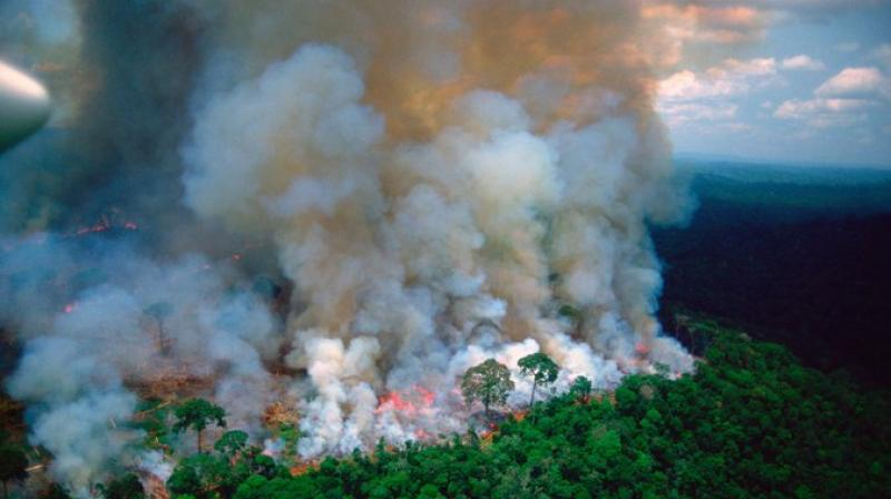 French President Emmanuel Macron on Thursday said wildfires in the Amazon were an 'international crisis' and called on this weekend's G7 to address the issue. (Photo: File)