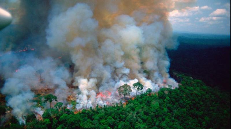 The thousands of fires burning in the Amazon don't look like the major forest fires of Europe or North America -- instead, they are fuelled mainly by branches, vegetation and other byproducts of deforestation in cleared areas, experts say. (Photo: File)
