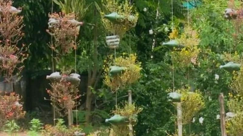 A forest range officer (FRO) of Pirakata Range under Midnapur division has created a beautiful garden using waste plastic bottles and rubber tyres. (Photo: ANI)