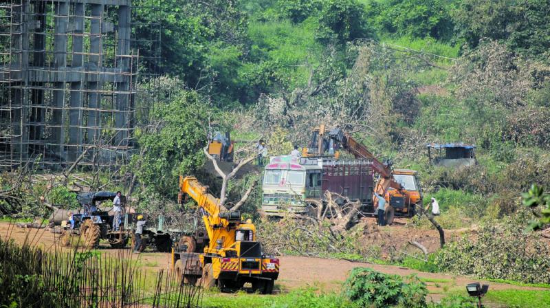A tractor carrying trees is seen at a metro train construction site in Mumbai. (Photo: MRUGESH BANDIWADEKAR)
