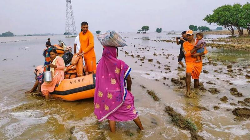 As many as 411 villages in 12 districts in Madhya Pradesh have been affected by floods. (PTI Photo)
