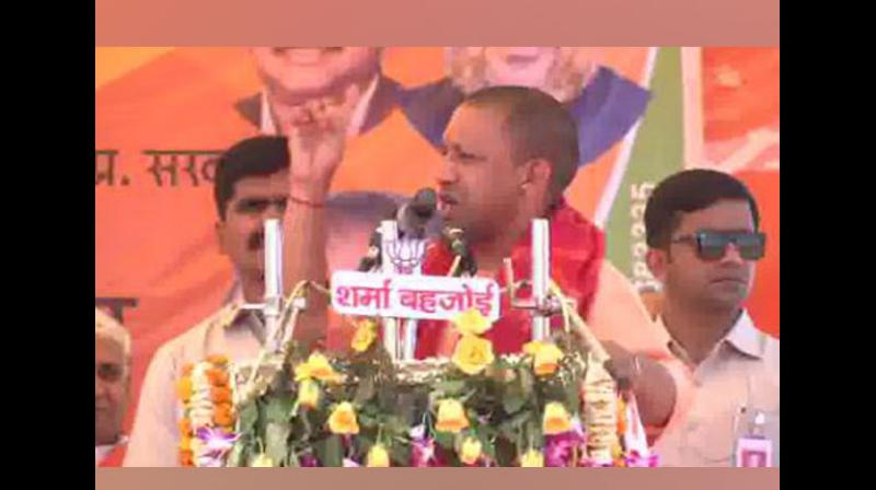 Uttar Pradesh Chief Minister Yogi Adityanath on Friday called Samajwadi Party (SP) candidate Shafiqur Rahman Barq as 'Babar ki Aulad' (successor of Babar) in a rallya at Sambhal. (Photo: File)