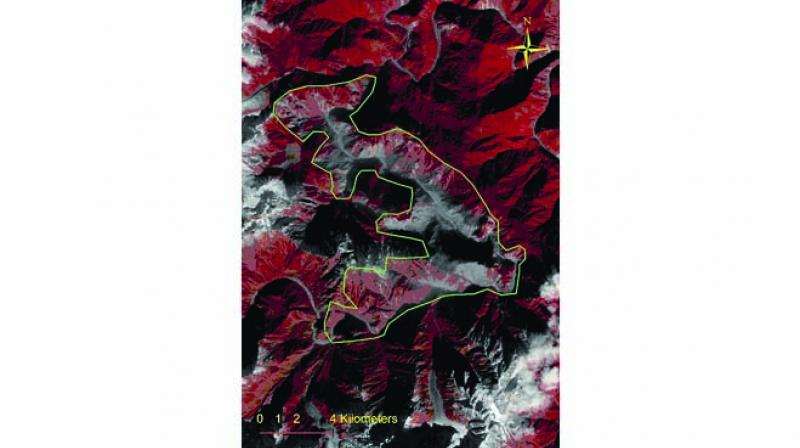 Satellite image of the landslide zone