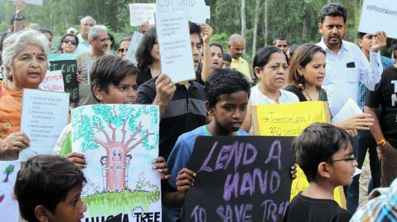 Resident groups held a 'Chipko' movement and embraced trees to stop them from being felled.