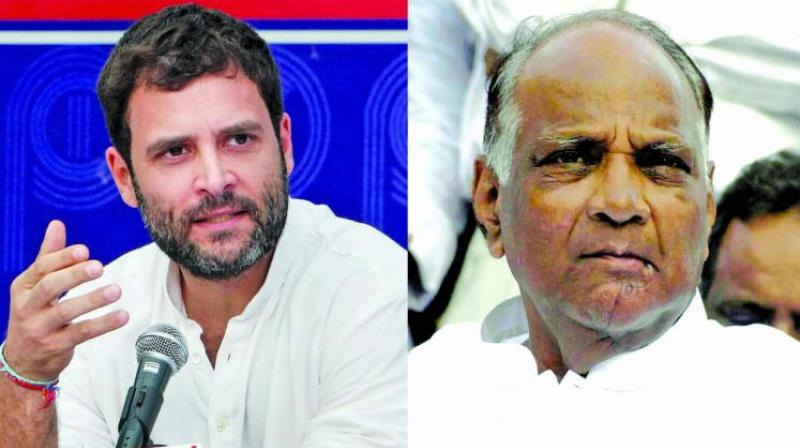 Congress has so far announced candidates for 12 seats and NCP for 16 seats. (Image: File)