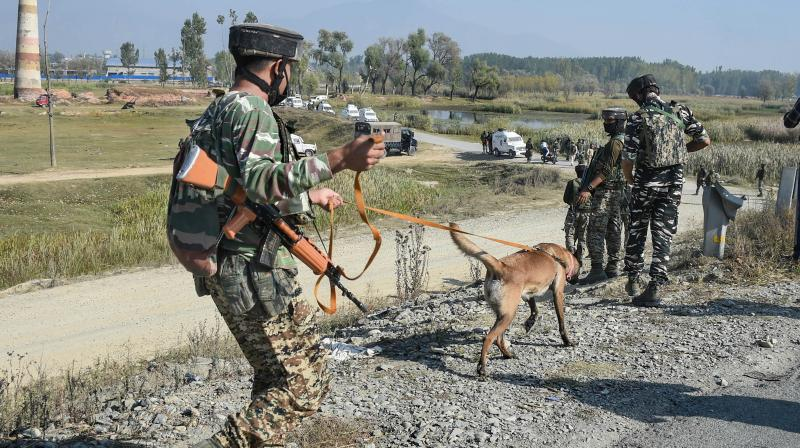 Security forces during a search operation after a militant attack at Srinagar-Jammu National highway, at Pampore in Pulwama District of South Kashmir. — PTI photo