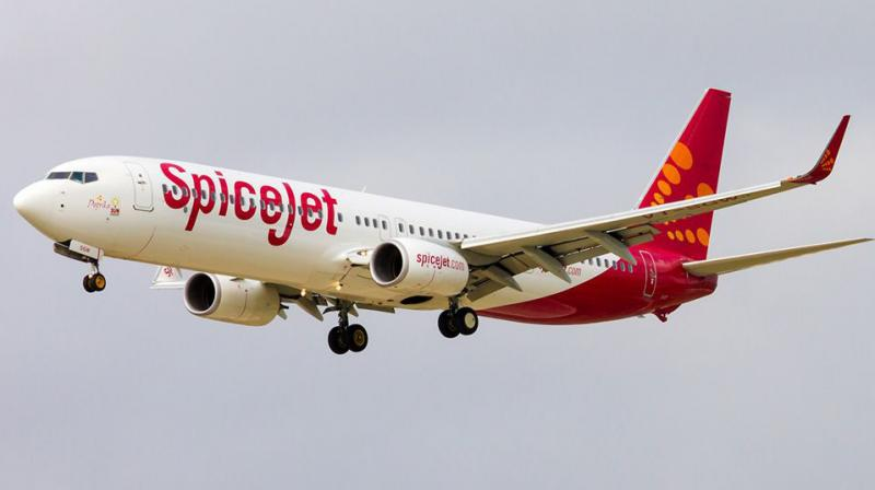 SpiceJet has a fleet of 49 planes and operates an average of 340 daily flights.
