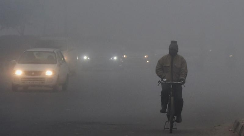 The minimum temperature settled at 10 degrees Celsius, three notches above the season's average, and the relative humidity was recorded at 96 per cent. (Photo: PTI)