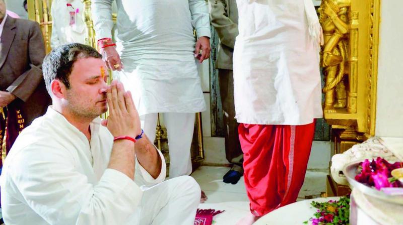 Congress vice-president Rahul Gandhi offers prayers at Shamlaji Temple in Aravali district of Gujarat. (Photo: PTI)