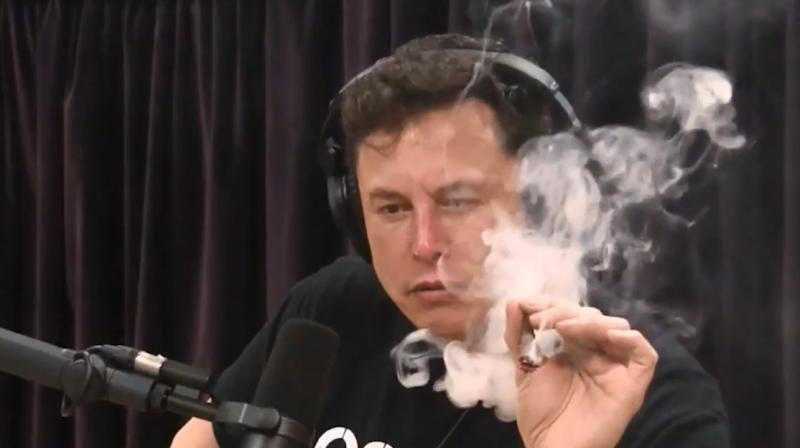 Dillion even went on to praise Musk for his 'adventourous spirit,' which makes him fit for a role in a porn movie involving weeds. (Photo: Joe Rogan Experience podcast)