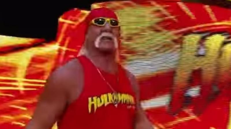 Stone believes that the Hulkster would 'body slam' his opponents in every debate. (Youtube Screengrab)