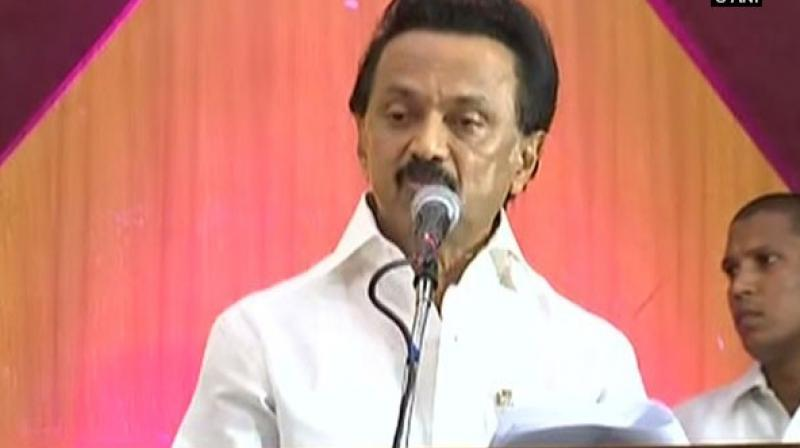 DMK president M.K. Stalin (Photo: ANI)