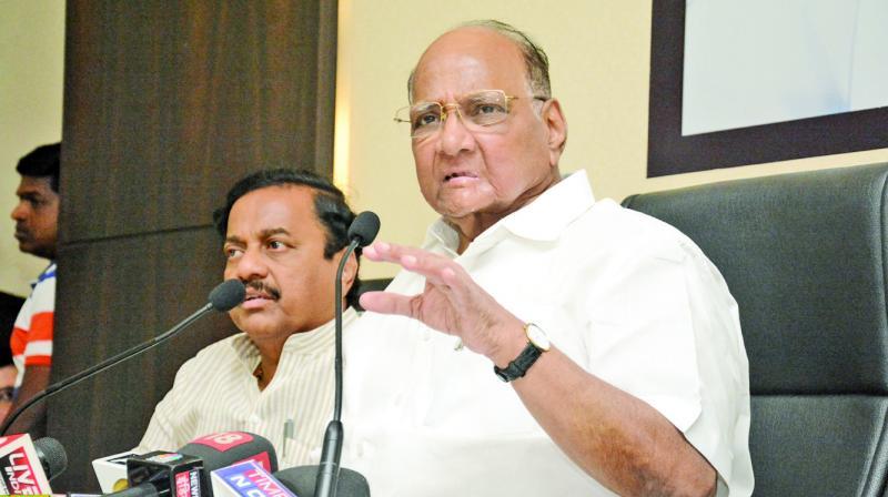 NCP president Sharad Pawar  (Photo: Shripad Naik)