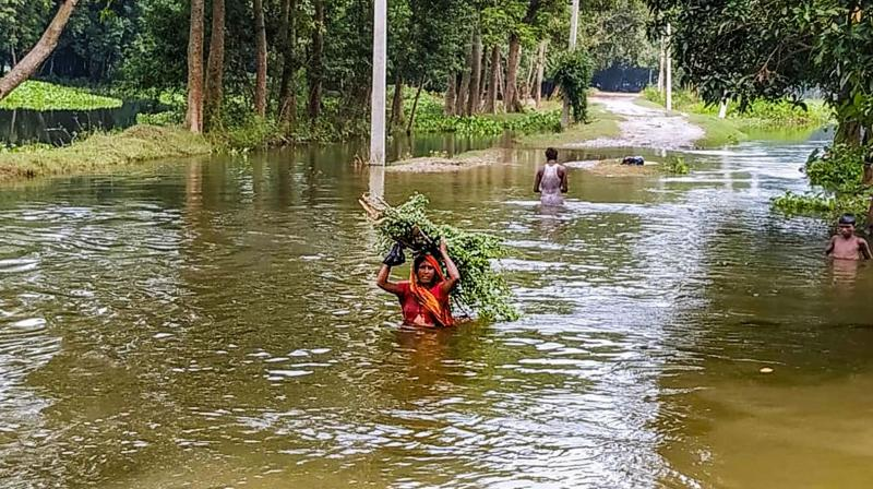 illagers wade through a flooded area following incessant rain, in Saharsa district, Bihar. (PTI)