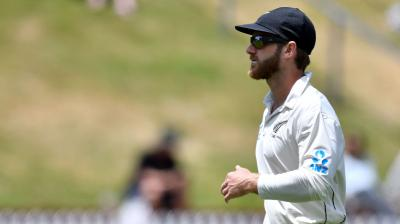 new age technology work from home reviews new zealand announces squad for upcoming test series 8263