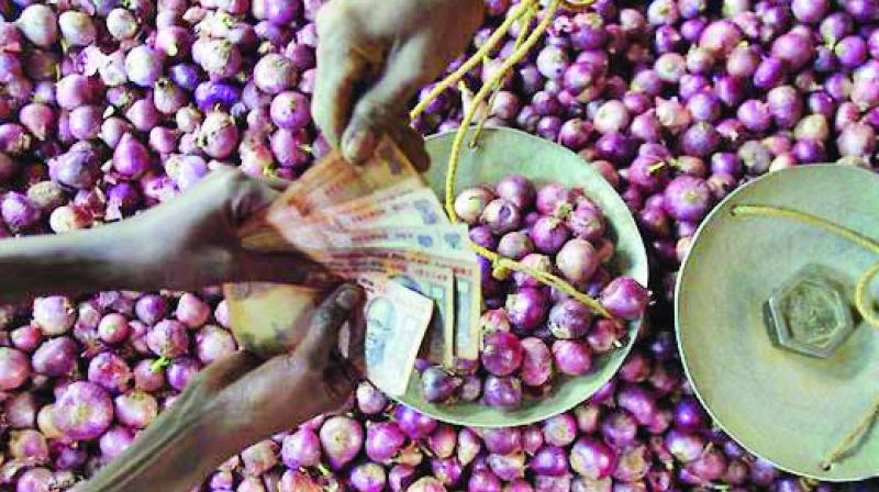 On an average, 2.5-3 lakh tonnes of onions are shipped on a monthly basis.