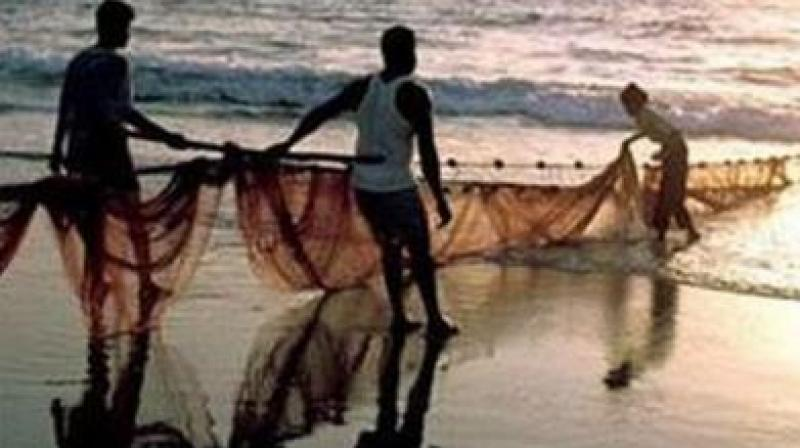 'Paaka fishing' involves usage of tangus threads or fishing wires, which are usually 3 to 4 kilometres in length and tagged with more than 1,000 hooks at regular intervals. (Representational Image)