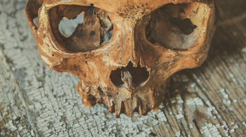 The discovery of human bones at the alleged murderer's  former home in Brittany has sparked hope that the truth will prevail. (Photo: Pixabay)