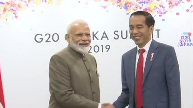 Prime Minister Narendra Modi holds a bilateral meeting with Indonesian President Joko Widodo in Osaka. (Photo:ANI/Twitter)