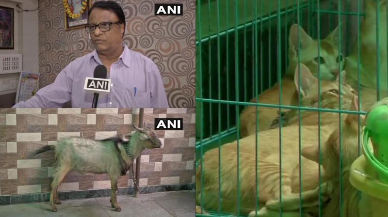 Manager said that they asked her to leave as they don't allow pets. (Photo: ANI   Twitter)