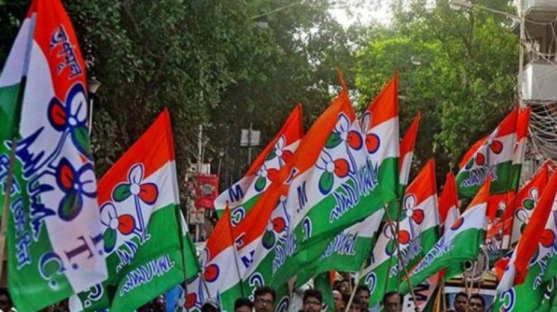 An elated Manas Bhunia dedicated the victory to TMC supremo and West Bengal Chief Minister Mamata Banerjee.  (photo: PTI)