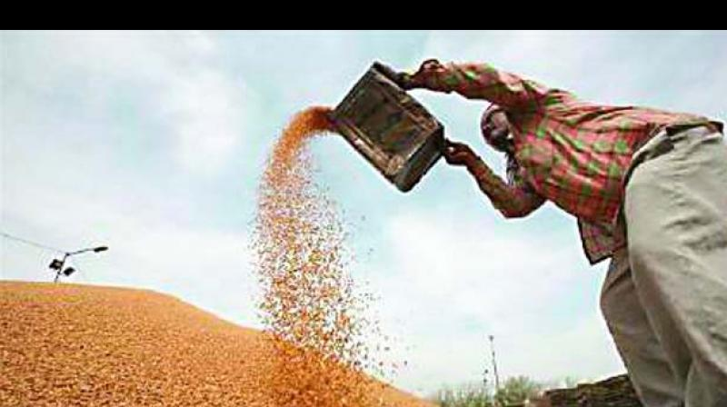 Wheat and rice are being sold through PDS shops, also known as fair price or ration shops.