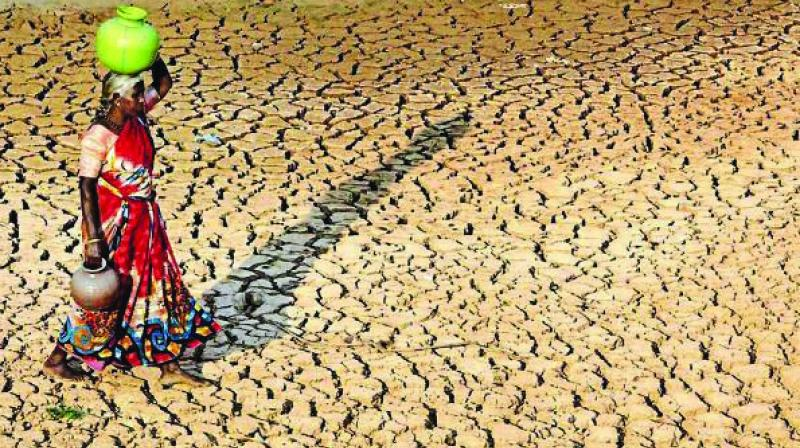 The region has been experiencing temperatures between 45 and 47 degrees Celsius for the last couple of weeks, causing water bodies in the belt to dry up.