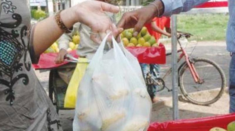 Plastic bags under 50 microns are banned. (Representational image)