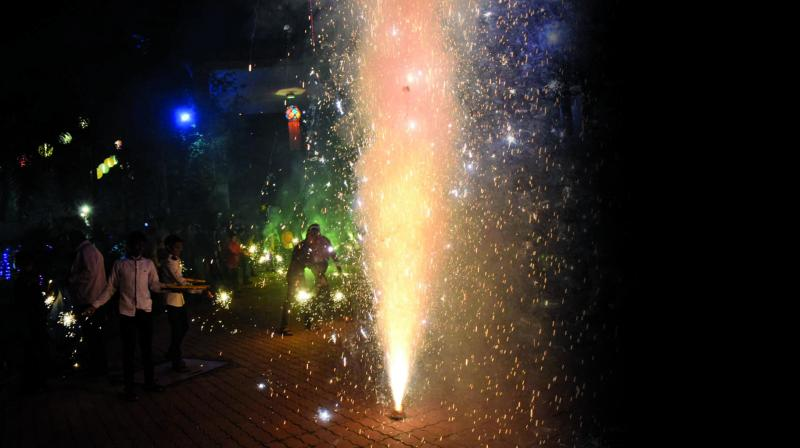The decision was taken in a bid to spread awareness about the hazardous effect of firecrackers on the ecosystem. (Photo: Deepak Kurkunde)
